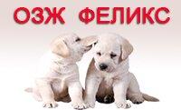 Общество защиты животных Феликс